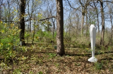 Forward into the Anthropocene