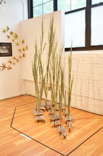 """""""99%"""" employs laser-cut industrial materials to offset specimens of Phragmites australis, an invasive species also known as the common reed. According to the University of Illinois' Prairie Research Institute, ninety-nine percent of the state of Illinois' original prairie lands no longer exist. Capable of growing up to twenty feet tall, the common reed often grows along highways and other unattended landscapes. Oftentimes the growth of these reeds usurps the growth of native species. Despite the familiarity of the impressive growth of Phragmites australis in our modern era, they are nevertheless an illusory display reminiscent of prairies from the past."""