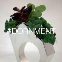 39_Succulent Garden Study I_thumbnail.png